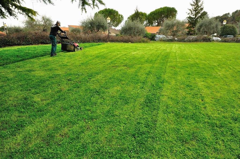 Cr ation et entretien des espaces verts association c 39 mieu for Association entretien espaces verts