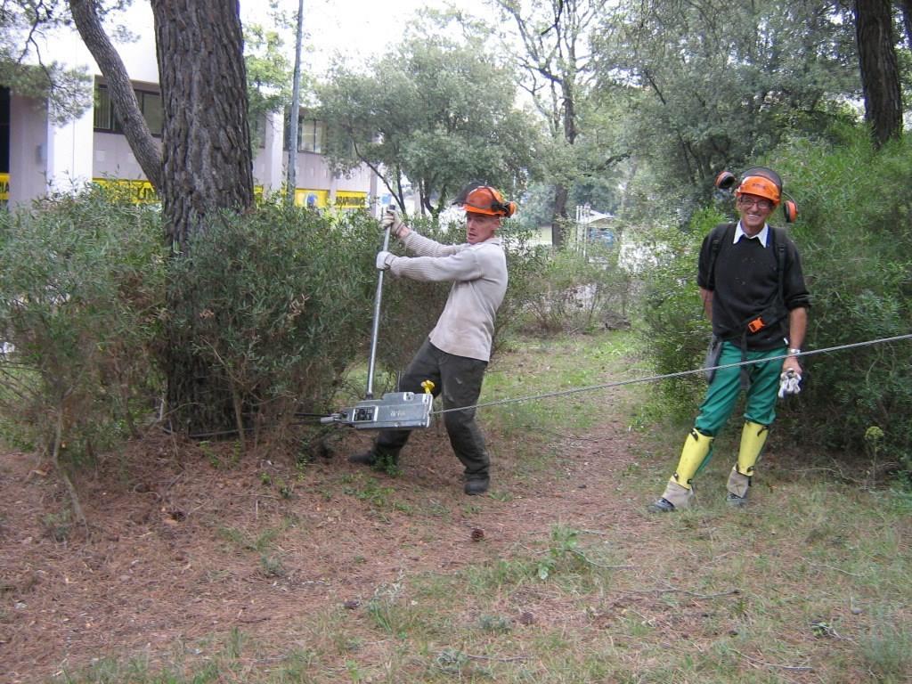 Entretien des espaces forestiers association c 39 mieu for Association entretien espaces verts