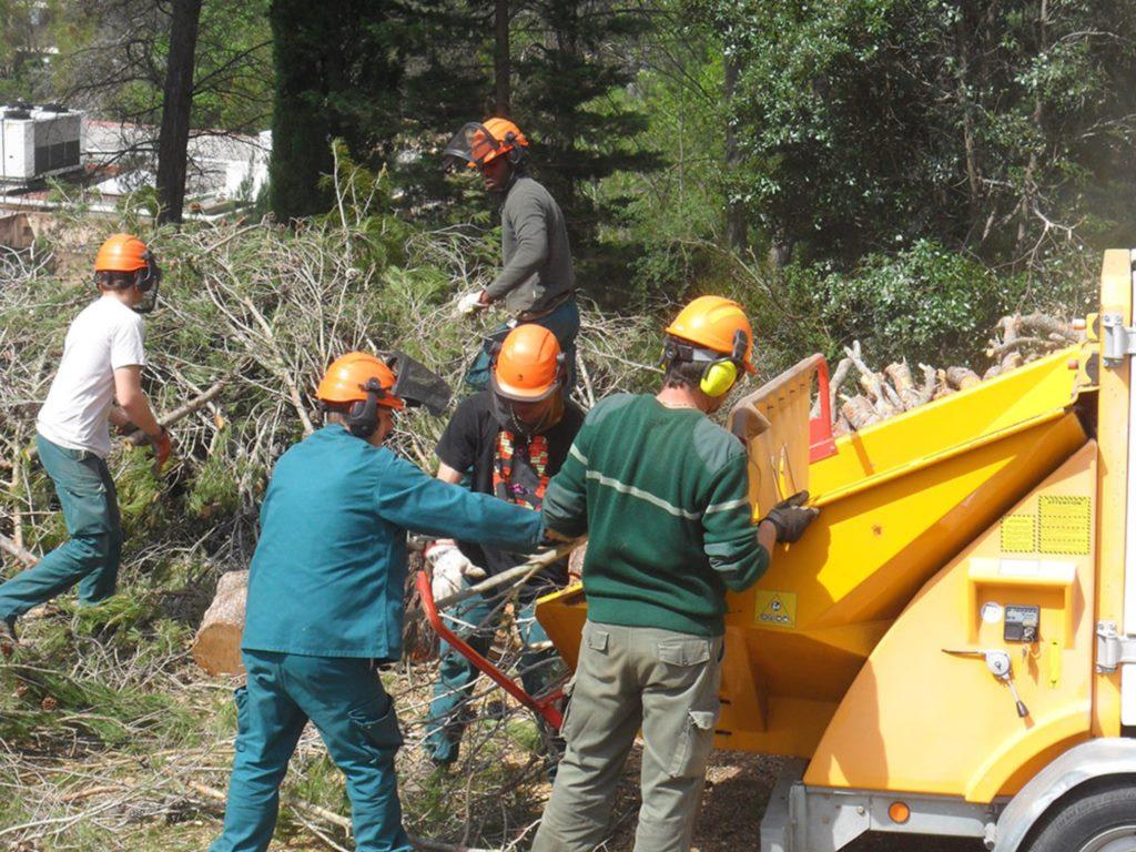 La sous traitance association c 39 mieu for Association entretien espaces verts